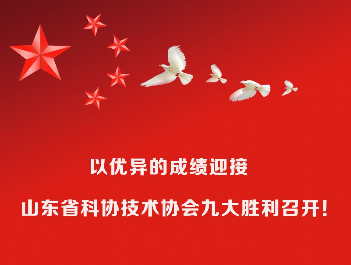 山东照明学会 以优异成绩迎接山东省科协技术协会九大胜利召开!
